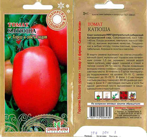 томат катюша отзывы фото