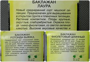 Семена и сорта хороших баклажанов для открытого грунта, включая белый и Черный красавец (отзывы)