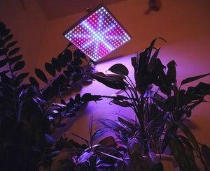 Лампы для цветов комнатных купить