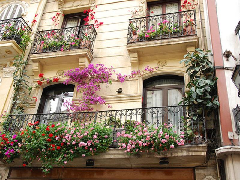 Цветочные композиции для балкона,