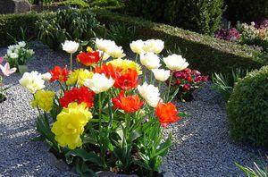 Цветы на кладбище