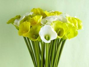 цветы картинки зеленые