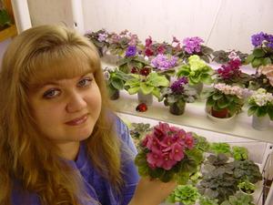 Рекомендации опытных цветоводов для выращивания комнатных фиалок