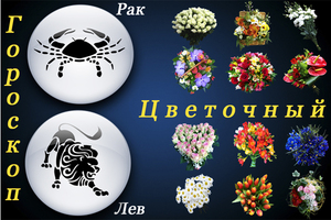 Цветок по дате рождения и знаку зодиака в 2019 году