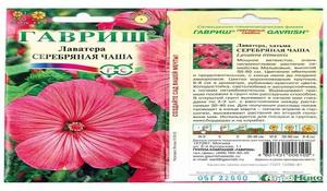 Как посадить и вырастить лаватеру выращивание лаватеры из семян и уход, когда сажать в грунт, виды