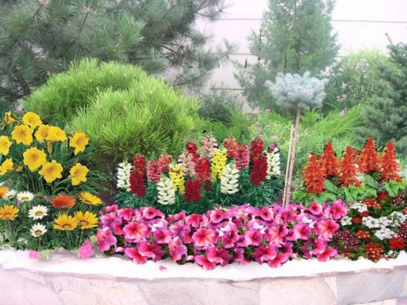 Миксбордер из кустарников и многолетних цветов - стильное решение.