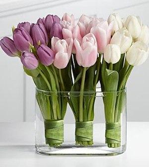 Правила хранения срезанных тюльпанов