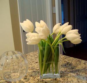 Как правильно срезать тюльпаны