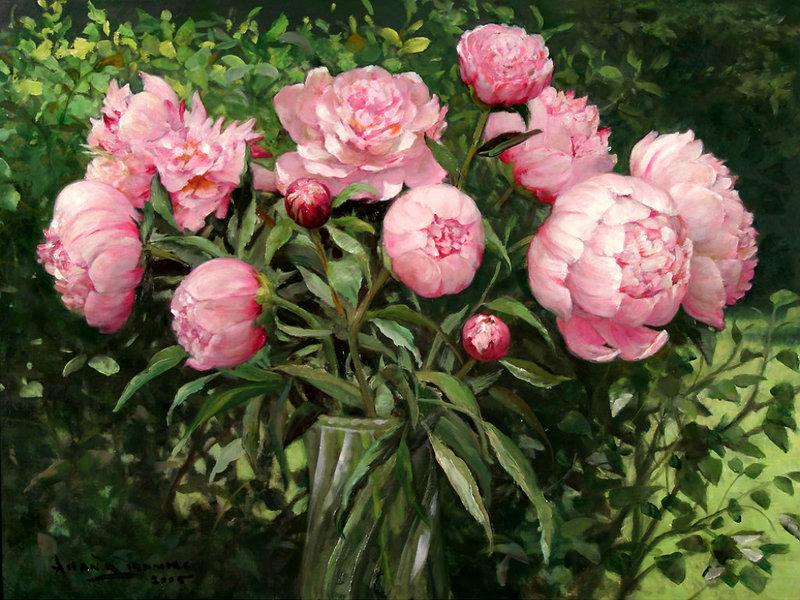 Внешний вид цветка пион