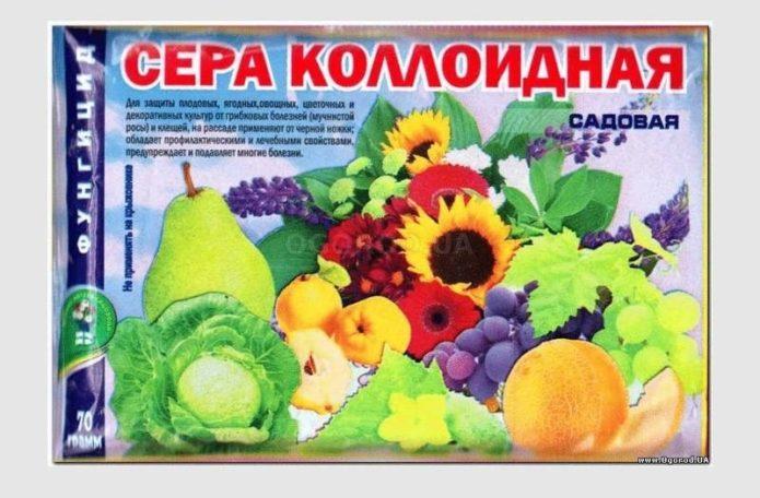 1552650349_sera_kolloidnaya_1552650338_5c8b9062b3943.jpg