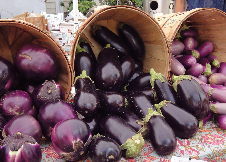 Сорта семян хороших баклажан для открытого грунта и отзывы