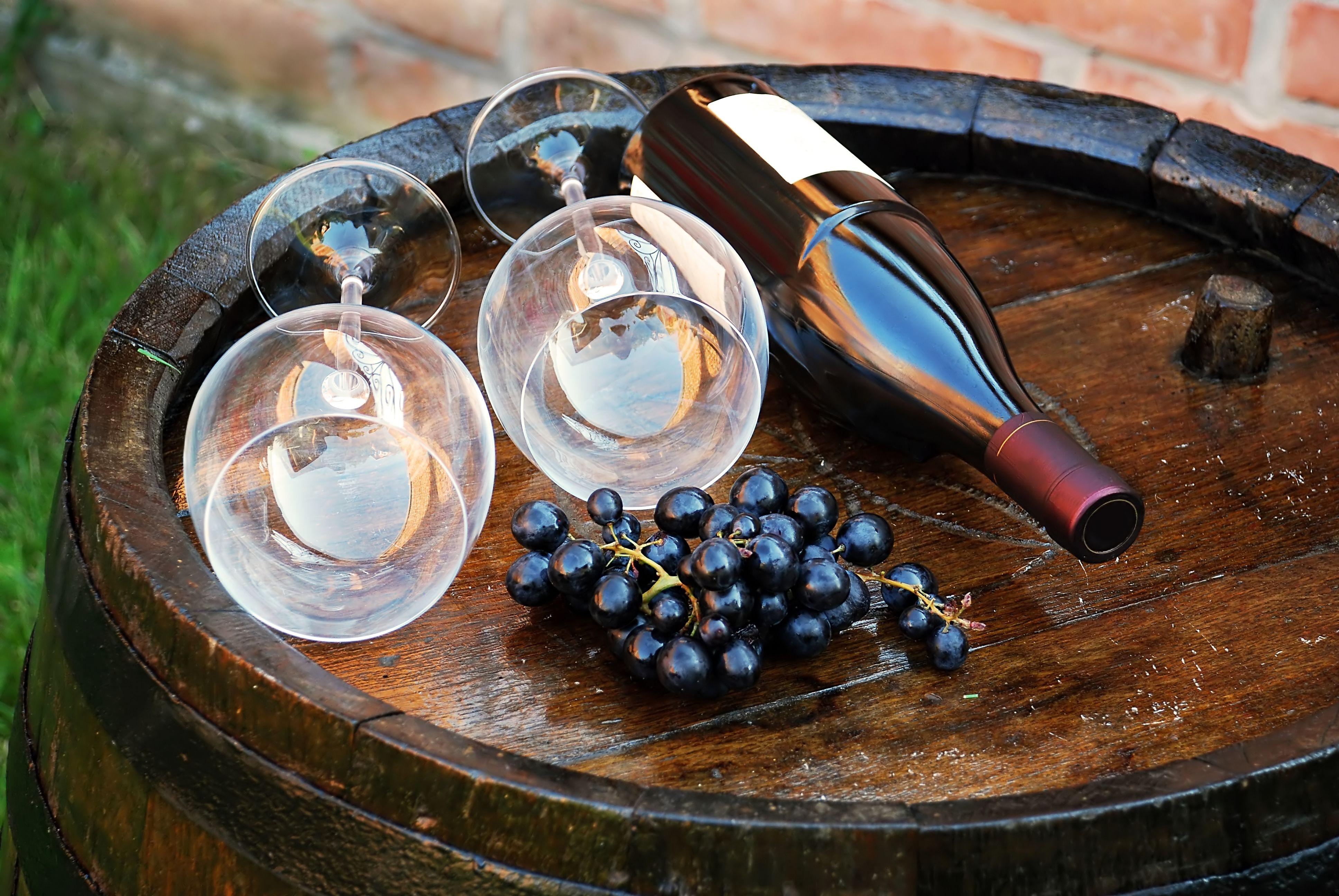 Такой разный Пино нуар: виноград, из которого делают красное бургундское