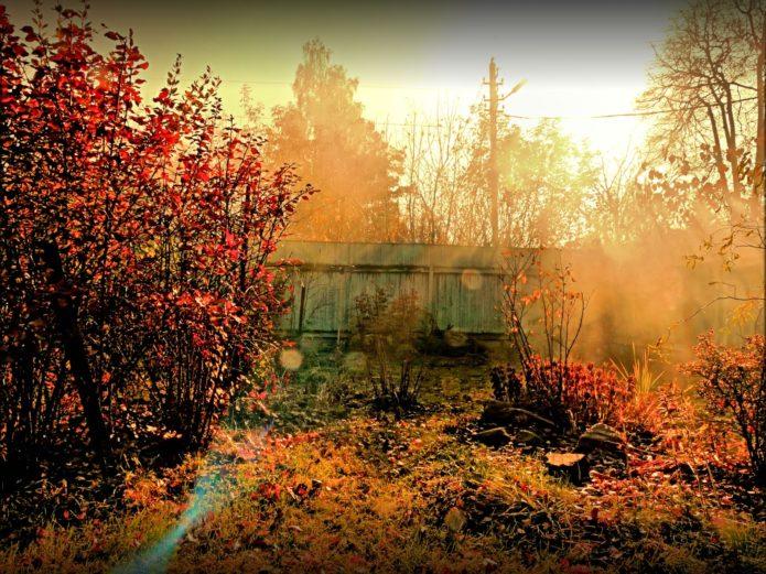 Дача осенью