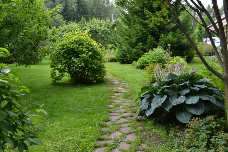 Лунный календарь садовода и огородника на август 2018 года