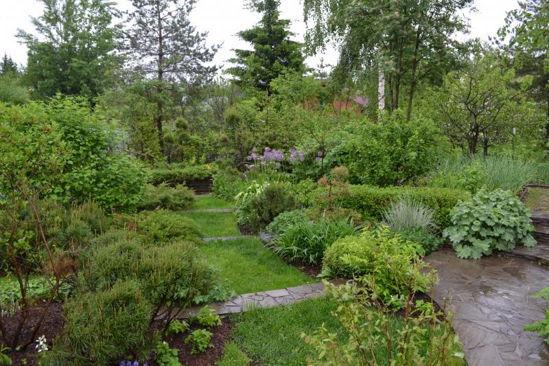 Лунный календарь садовода и огородника на июнь 2018 года