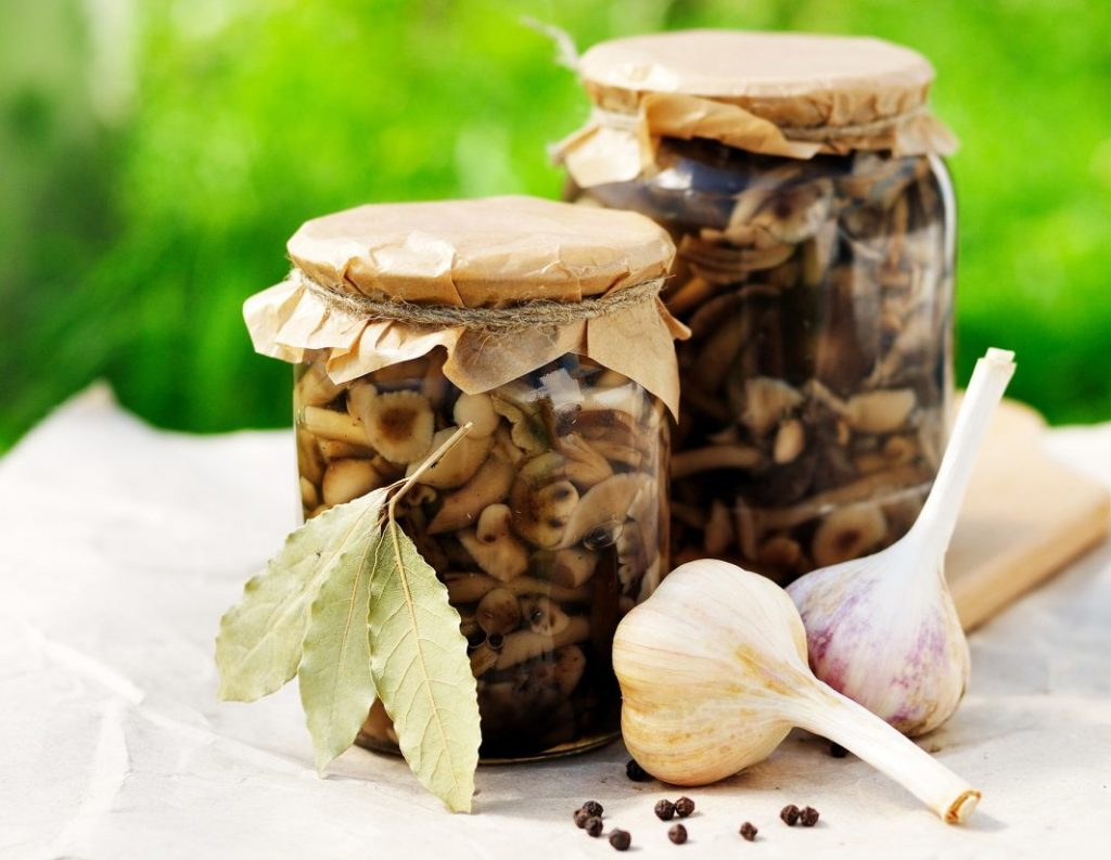 Консервированные грибы в банке, чеснок и перец горошком