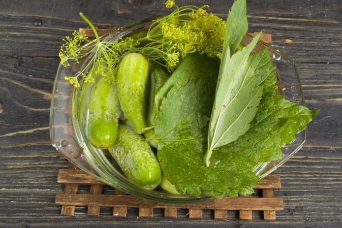 Хрустящие огурцы с листьями смородины