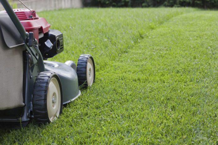 Покос газона