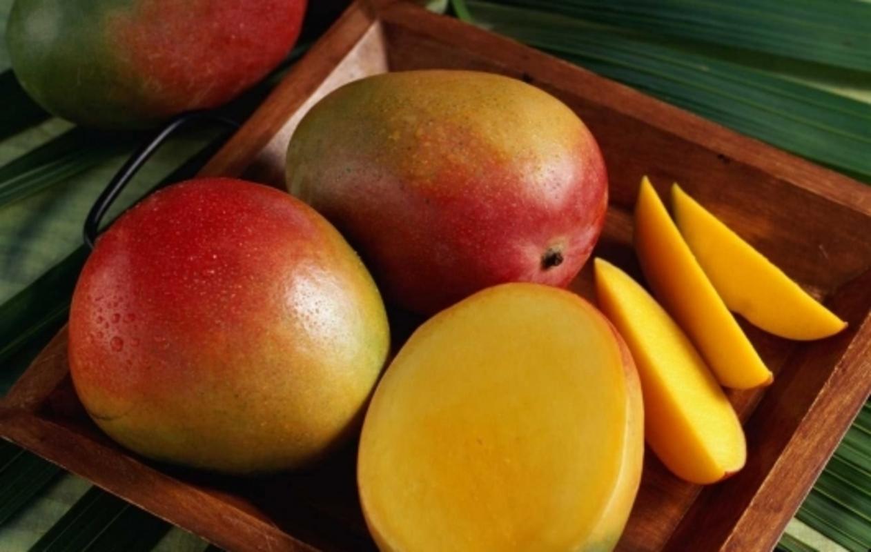 Манго: описание популярных сортов короля фруктов