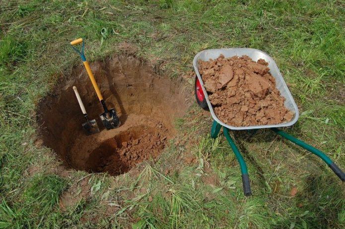 Посадочная яма для черешни