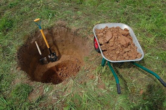 Посадочная яма, лопаты и тачка