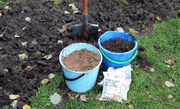 Перекопанная земля и удобрения