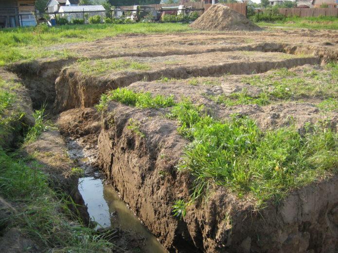 Высокий уровень грунтовых вод на участке