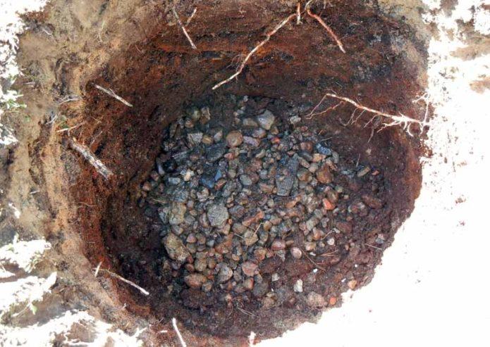 Посадочная яма для шелковицы