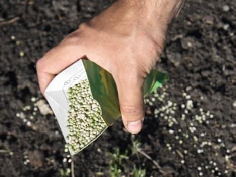 Сухой способ внесения удобрений