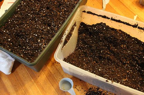 Перлит в составе почвенного грунта