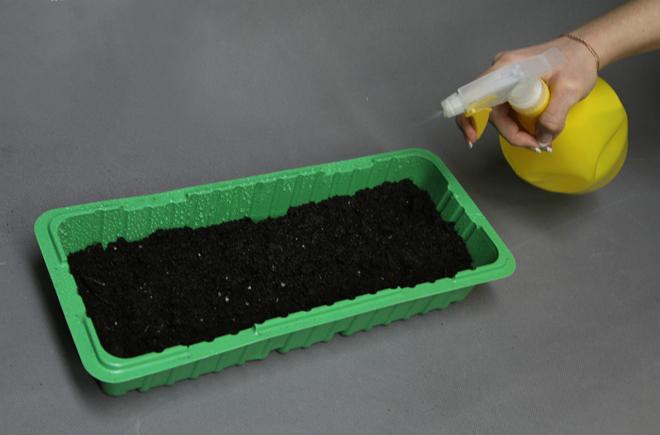 Опрыскиваем почву