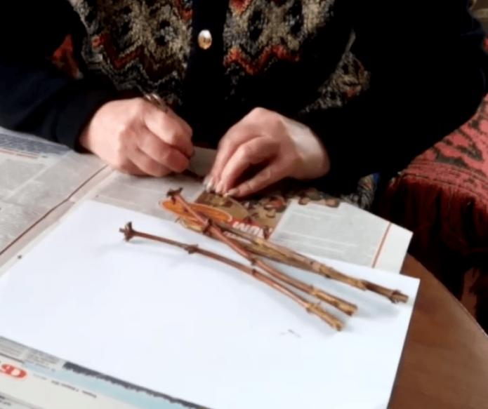 Подготовка черенков зимой
