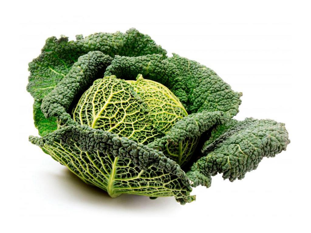 Посадка и выращивание савойской капусты: практические рекомендации. Как вырастить савойскую капусту в открытом грунте