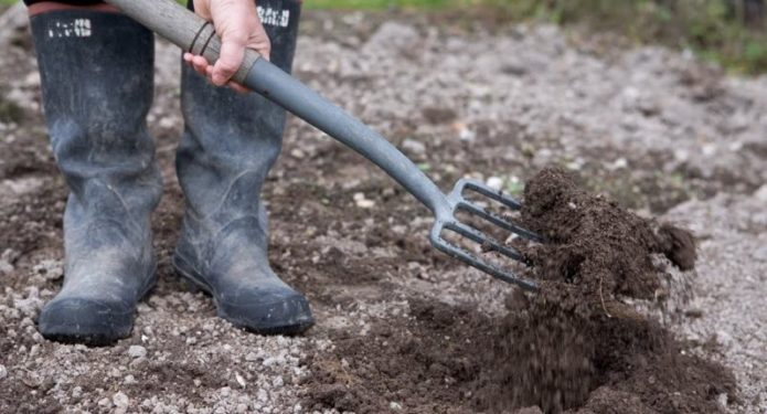 Подготовка участка для посева капусты