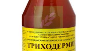 Боифунгицид Триходермин