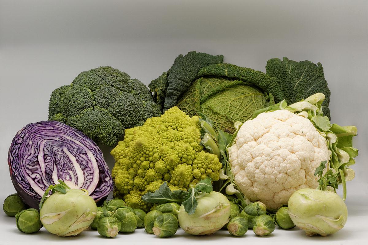 Все виды капусты: описание, лучшие сорта и производители семян
