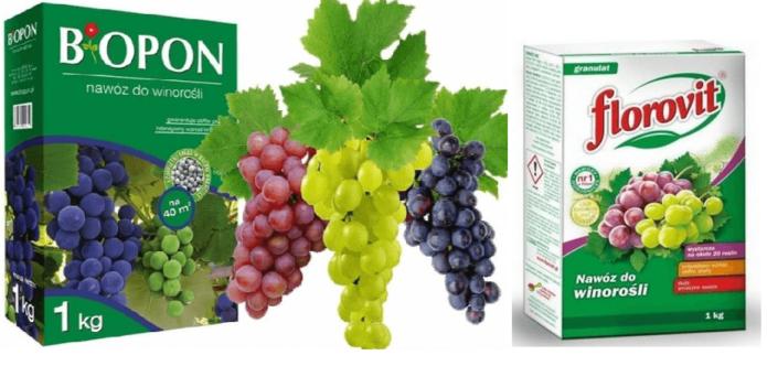 Удобрения для винограда