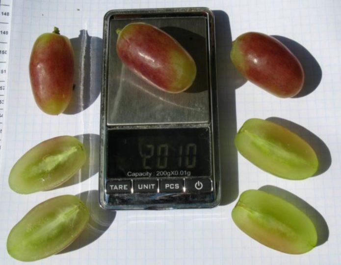 Ягоды винограда Юлиан