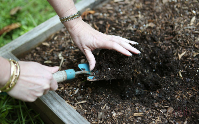 Весенняя подготовка грунта к посеву капусты