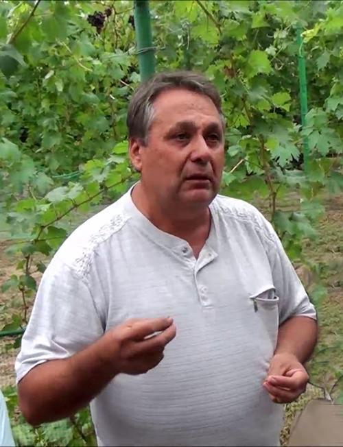 Загорулько Виталий Владимирович
