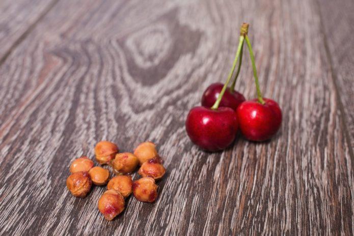Косточки и плоды вишни