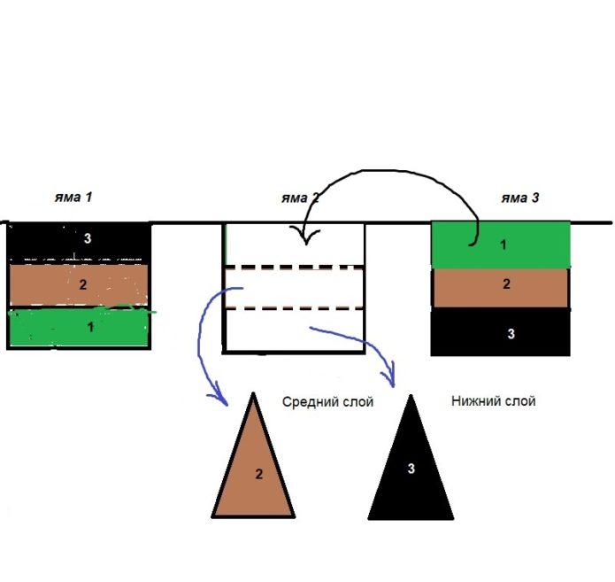 Третий этап плантажа