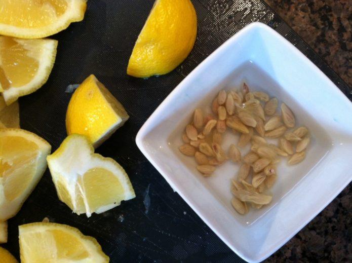 Семена лимона в пиале