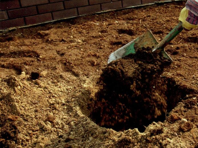 Засыпка питательной смеси в яму
