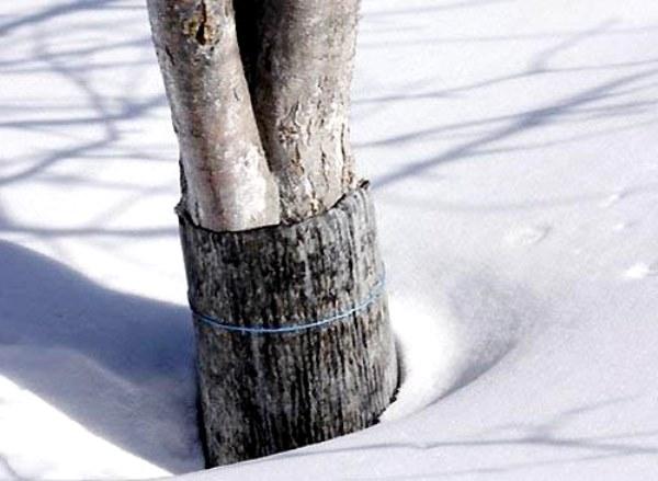 Рубероид для укрытия ствола