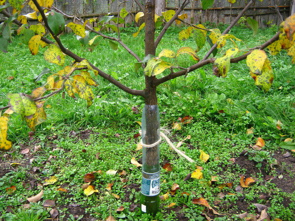 Пластиковые бутылки для защиты ствола
