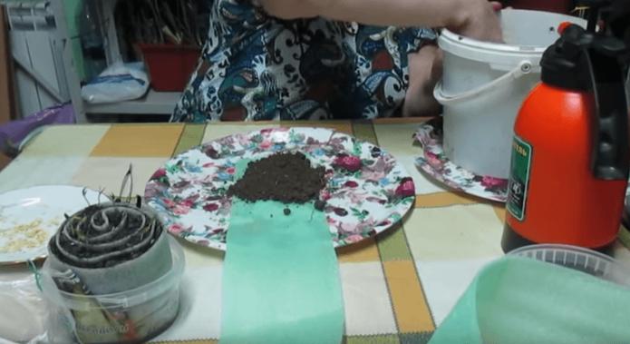 Изготовление улитки