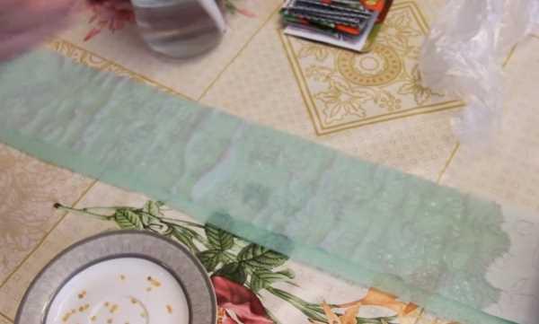 Улитка на туалетной бумаге