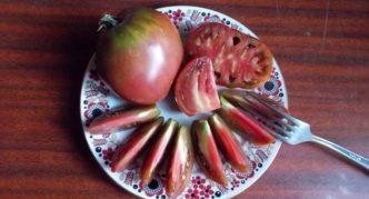 Сорт томата Бычье сердце чёрное