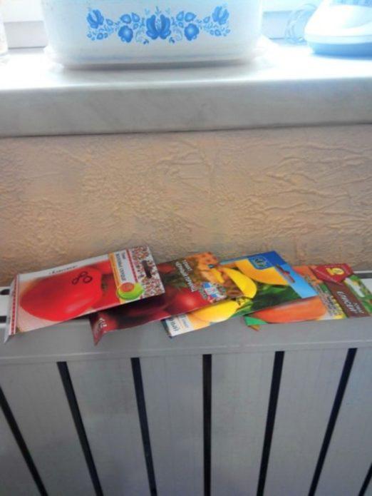 Прогрев семян томатов на батарее